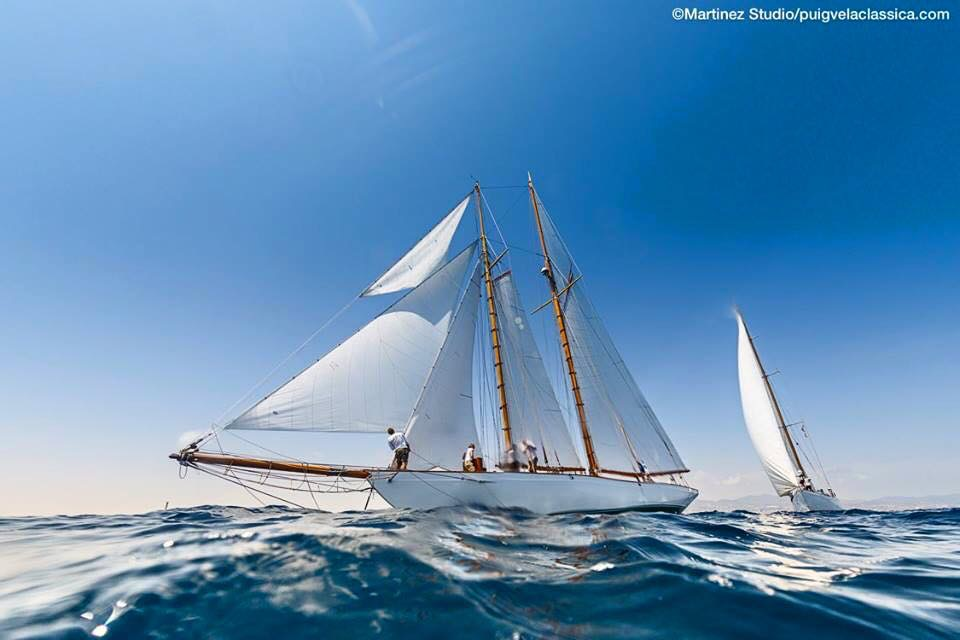 Beautiful sail boat all in the wind while at sea.